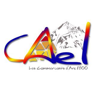 Cael_Logotype(V3)